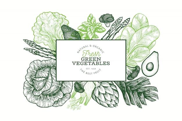 Modello di progettazione di verdure verdi. illustrazione disegnata a mano dell'alimento di vettore. banner vegetale in stile inciso. banner botanico retrò.