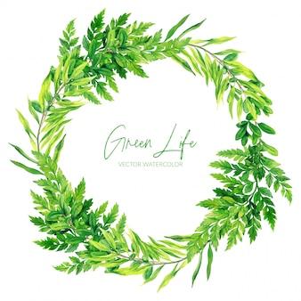 Corona verde delle felci dell'acquerello, illustrazione disegnata a mano