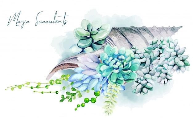 Design di auguri con piante grasse che crescono in conchiglia