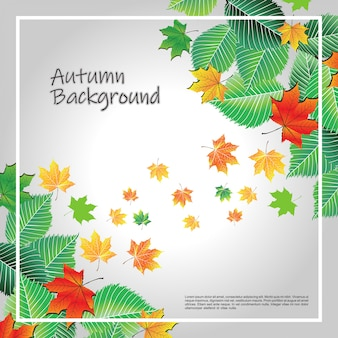 Sfondo autunno grigio