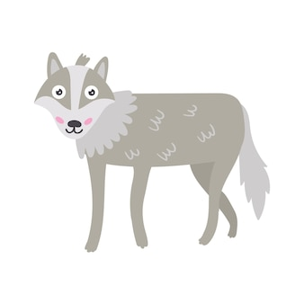 Lupo grigio