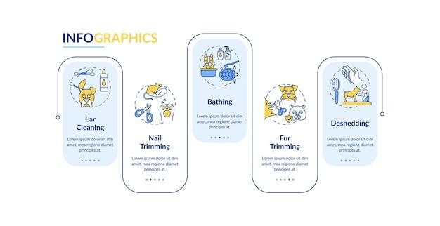 Modello di infografica tipi di servizi di toelettatura