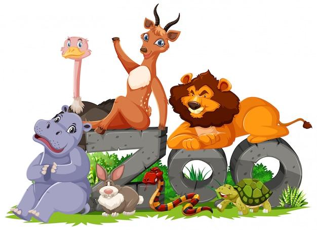 Gruppo di animali con il segno dello zoo