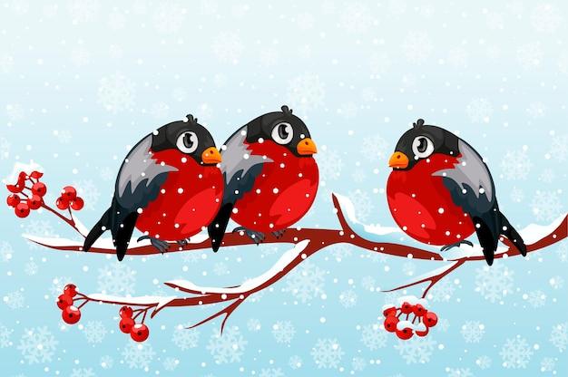 Un gruppo di ciuffolotti del fumetto su un ramo di sorbo. uccelli rossi su un ramo in inverno con la neve.