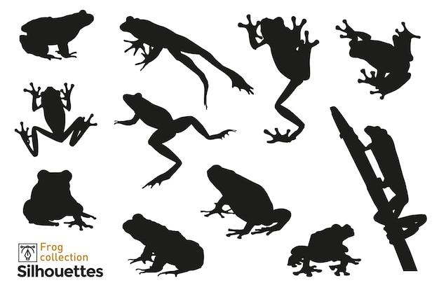 Gruppo di sagome di rana che salta, arrampicata su una pianta. icone di piccoli animali per il tuo.