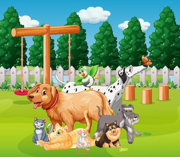Gruppo di animali da compagnia nella scena del plaground