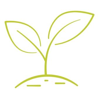 Pianta in crescita due foglie verdi concetto di protezione ambientale eco concetto di fattoria naturale