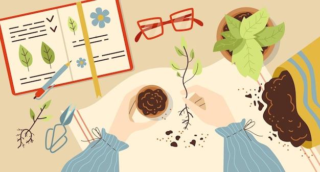 Piante in crescita e piantare erbe sfondo piatto illustrazione vettoriale isolato