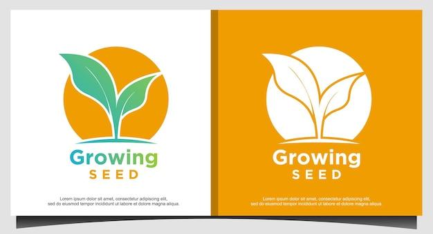 Vettore di progettazione del logo del seme in crescita