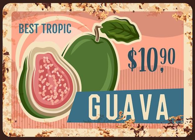 Insegna arrugginita del metallo della frutta tropicale della guava di cibo fresco dell'azienda agricola.