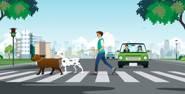 Cane guida per cieco che attraversa un attraversamento pedonale.
