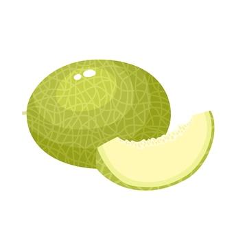 Metà, fetta e tutto il succo di melone. verdura fresca del fumetto isolata