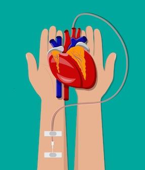 Mano del donatore con il cuore