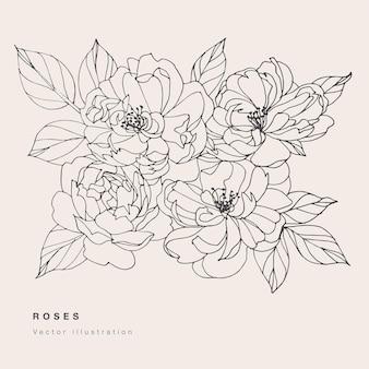 Illustrazione dei fiori della rosa di tè di vettore di tiraggio della mano. corona floreale. scheda floreale botanica su sfondo bianco.