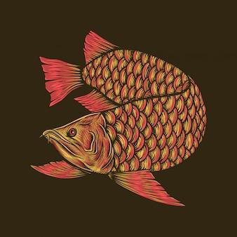 Mano che disegna l'illustrazione rossa dorata d'annata di arowana