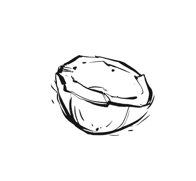 Illustrazione disegnata a mano della noce di cocco della frutta del disegno grafico dell'inchiostro tropicale esotico astratto disegnato a mano