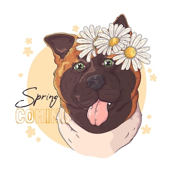 Cane akita disegnato a mano con fiori