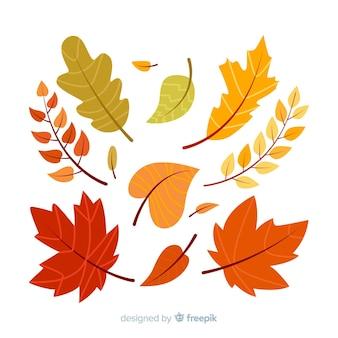 Raccolta disegnata a mano delle foglie della foresta di autunno