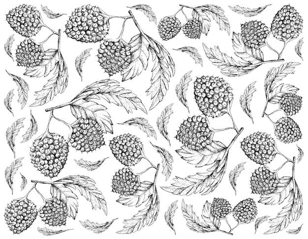 Fondo disegnato a mano di palloncino berry fruits