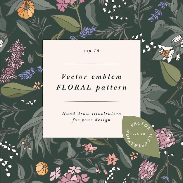 Sfondo disegnato a mano con piante aromatiche vintage, frutta, spezie, erbe per profumeria.