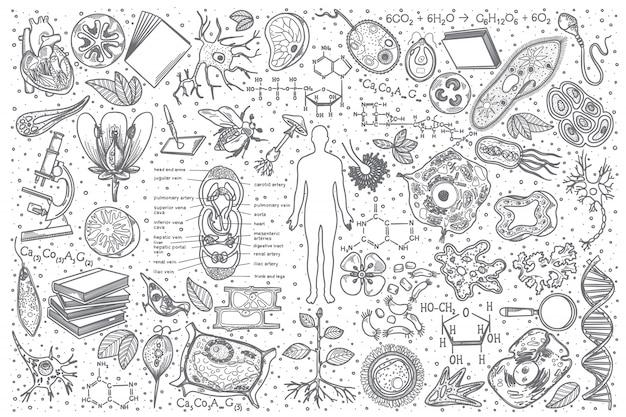 Insieme di doodle di biologia disegnata a mano