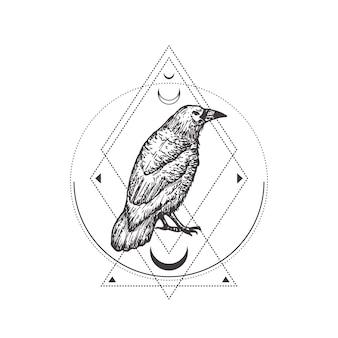 Illustrazione di schizzo di corvo o corvo nero disegnato a mano