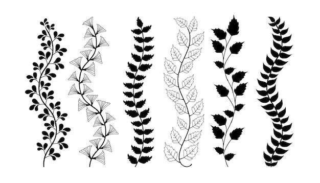 Insieme di elementi di bordi disegnati a mano collezione ornamento floreale di turbinio vector