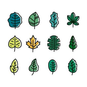 Collezione di foglie botaniche disegnate a mano