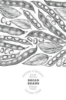 Modello di disegno di fave disegnato a mano. illustrazione vettoriale di cibo fresco biologico. illustrazione di baccelli retrò. sfondo di cereali in stile botanico inciso.