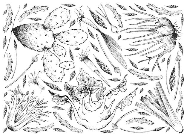 Disegnato a mano di sfondo di verdure di gambo e lampadina