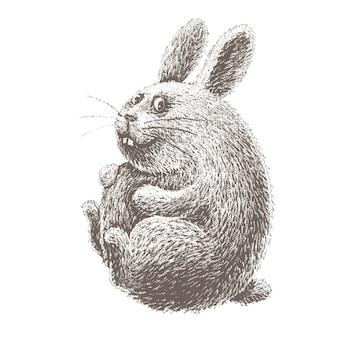 Coniglietto di pasqua del fumetto disegnato a mano isolato sulla lavagna bianca