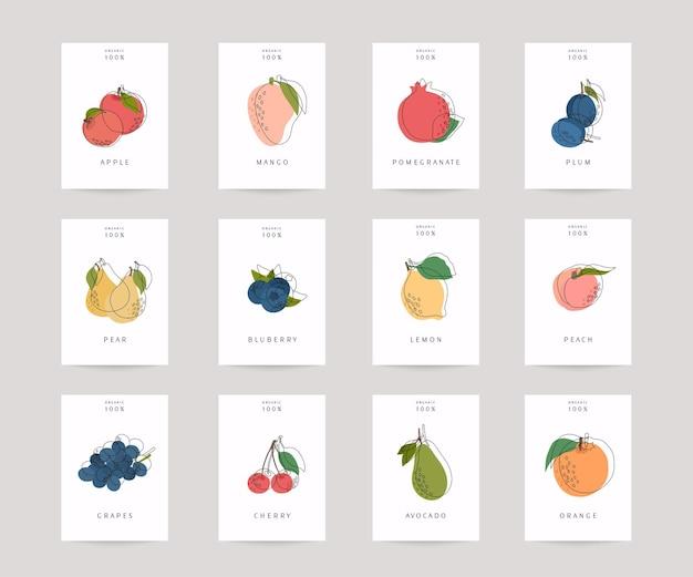 Set di poster di frutti colorati disegnati a mano