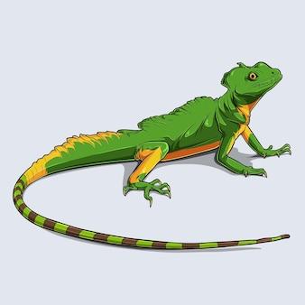 Disegnato a mano colorato geco lucertola rettile loungelizard