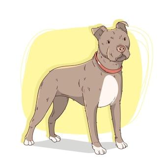 Illustrazione di pitbull carino disegnato a mano