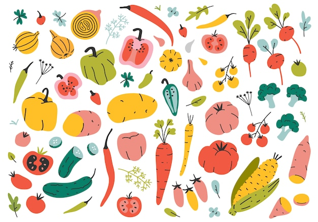 Disegnati a mano diversi tipi di verdure.