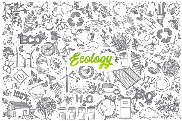 Fondo stabilito di doodle di ecologia disegnato a mano con scritte verdi