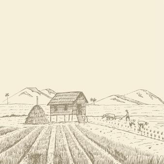 Agricoltori disegnati a mano che raccolgono riso in thailandia