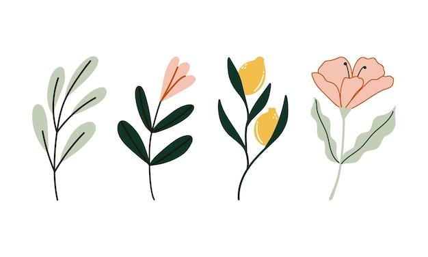 Collezione di elementi floreali decorativi disegnati a mano con fiori primaverili piatti