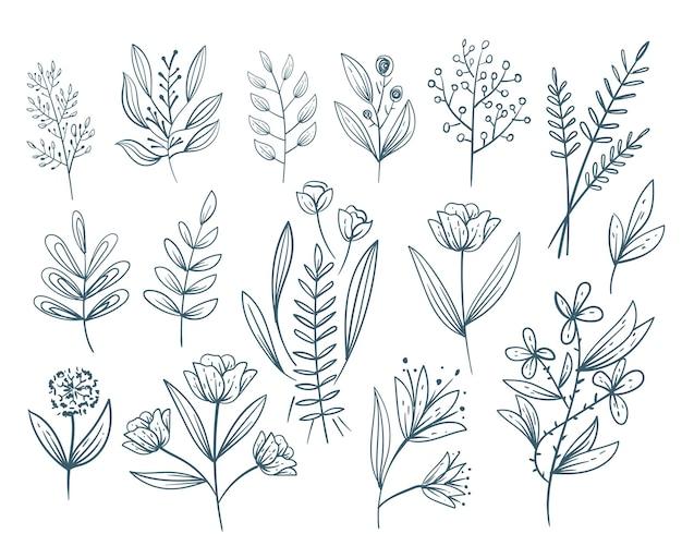 Insieme di vettore di disegno isolato elementi di schizzo di linea di doodle di fiori floreali disegnati a mano