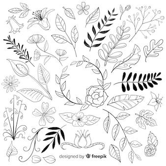 Collezione di ornamenti floreali disegnati a mano Vettore Premium
