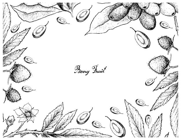 Cornice disegnata a mano di atherton raspberries e jambolan prugne