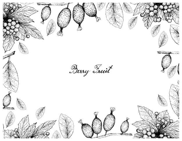 Cornice disegnata a mano di bacche di natale e frutti di elaeagnus latifolia