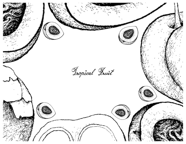 Cornice disegnata a mano di pesca o pesche noci e zucchero