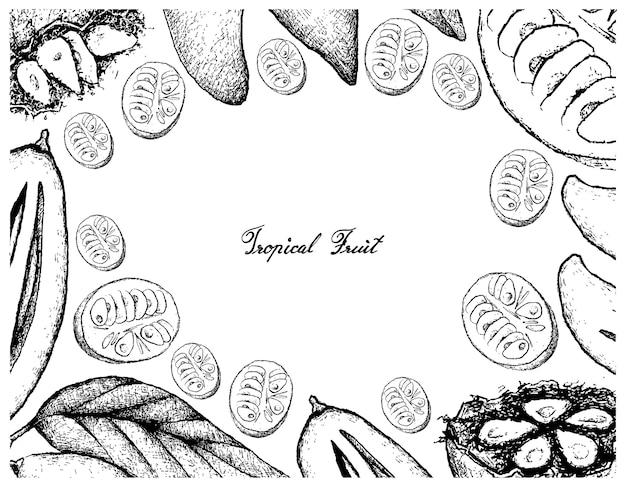 Cornice disegnata a mano di maturi madan e monk fruits