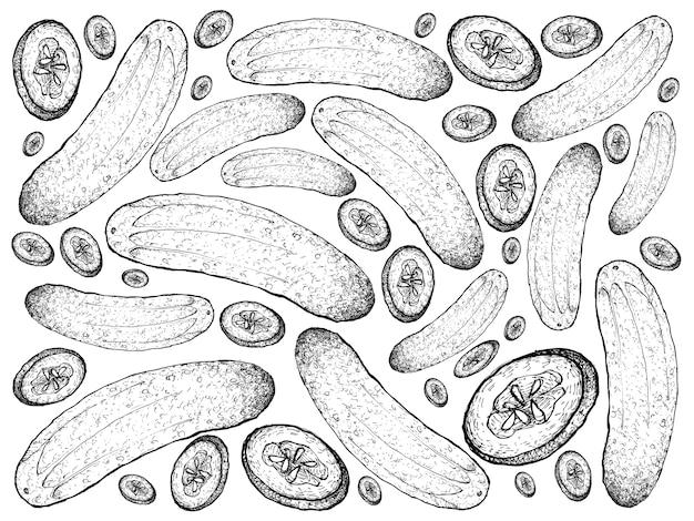 Disegnato a mano di sfondo di cetrioli verdi freschi
