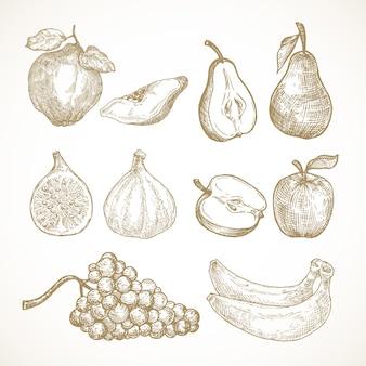 Raccolta di illustrazioni vettoriali di frutta disegnata a mano mele pere mele cotogne fichi uva e banane schizzo...