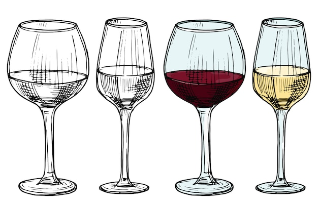 Vetri disegnati a mano con l'illustrazione di vettore del vino rosso e bianco