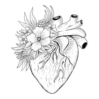 Cuore disegnato a mano con fiore anatomia linea arte in bianco e nero