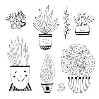 Set di piante d'appartamento disegnate a mano. fiori di doodle in vaso.
