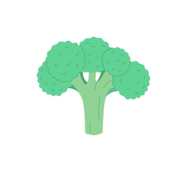 Illustrazione disegnata a mano dell'icona di broccoli in stile piano isolato illustrazione vettoriale moderna